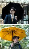 waltz in the rain
